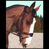 Bridon Difference Muserolle Dressage